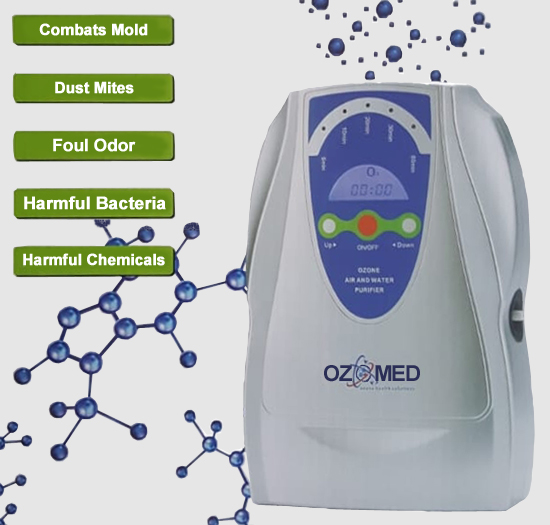 500mg Ozone Purification System